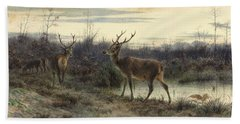 Deers In The Forest At Fontainebleau Bath Towel
