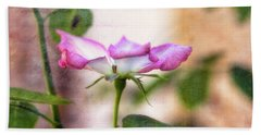 Hand Towel featuring the photograph Delicate by Joan Bertucci