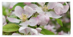 Delicate Soft Pink Apple Blossom Hand Towel by Gill Billington