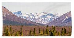 Denali Wilderness Beauty Bath Towel by Allan Levin
