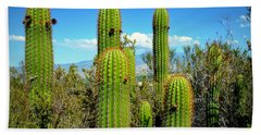 Desert Plants - All In The Family Bath Towel by Glenn McCarthy