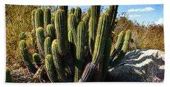 Desert Plants - The Wild Bunch Bath Towel by Glenn McCarthy