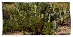 Desert Prickly-pear No6 Hand Towel