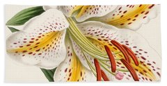 Detail Of A Lily Hand Towel