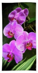 Dew-kissed Moth Orchids Hand Towel