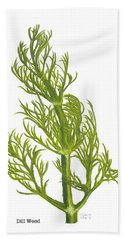 Dill Plant Hand Towel