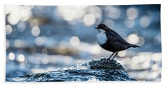 Hand Towel featuring the photograph Dipper On Ice by Torbjorn Swenelius