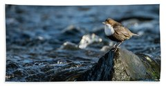 Dipper On The Rock Hand Towel by Torbjorn Swenelius