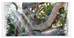 Do-00044 Mount Ettalong Bath Towel by Digital Oil