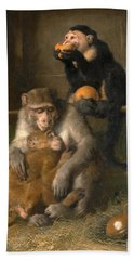 Doctor's Visit To Poor Relations At The Zoological Gardens Hand Towel