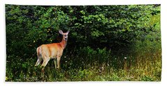 Hand Towel featuring the photograph Doe A Deer by David Pantuso