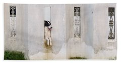 Dog Watching Hand Towel