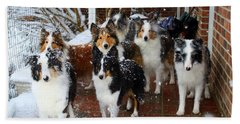Dogs During Snowmageddon Hand Towel