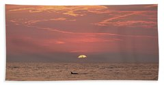 Hand Towel featuring the photograph Dolphin Swims At Sunrise by Robert Banach