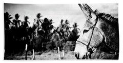 Donkey Hand Towel