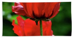 Double Red Poppies Bath Towel