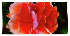 Double Rose Hand Towel by Mark Blauhoefer