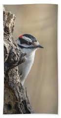 Downy Woodpecker Img 1 Bath Towel