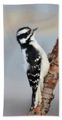 Downy Woodpecker Bath Towel