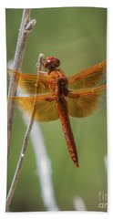 Dragonfly 10 Bath Towel