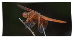 Dragonfly 11 Bath Towel