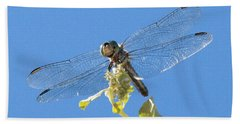Dragonfly 2 Hand Towel