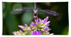 Dragonfly And Phlox Bath Towel