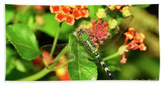 Dragonfly Hand Towel by Kathy Baccari