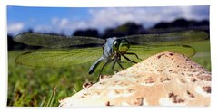 Dragonfly On A Mushroom Bath Towel by Chris Mercer