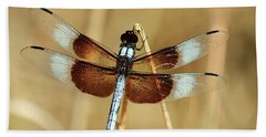 Hand Towel featuring the photograph Dragonfly On Reed by Sheila Brown