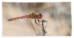 Dragonfly Resting Hand Towel