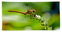 Dragonfly Sitting On Flower Bath Towel