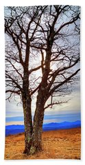 Dreamcatcher Hand Towel by Dale R Carlson