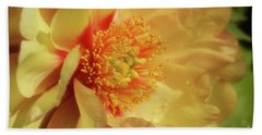 Hand Towel featuring the photograph Drenched In Sunshine by Rachel Cohen