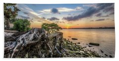 Hand Towel featuring the photograph Driftwood At The Edge by Debra and Dave Vanderlaan
