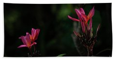 Dual Red Plumerias Hand Towel