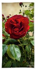 Dublin Bay Climbing Rose Hand Towel