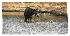 Ducks - Moose Rollinsville Co Hand Towel