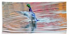 Duck On An Autumn Pond In The Chesapeake Bay Maryland Hand Towel