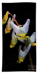 Hand Towel featuring the photograph Dutchmans Breeches by Barbara Bowen