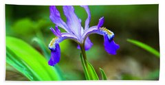 Dwarf Crested Iris Hand Towel