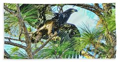 Hand Towel featuring the photograph Eagle Fledgling 2017 by Deborah Benoit