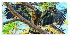 Hand Towel featuring the photograph Eagle Fledgling II 2017 by Deborah Benoit