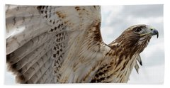 Eagle Going Hunting Hand Towel