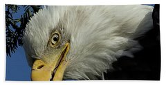 Eagle Head Bath Towel by Sheldon Bilsker