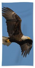 Eagle In Sunlight Hand Towel