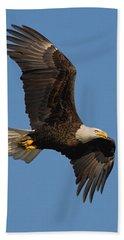 Eagle In Sunlight Bath Towel