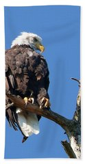 Eagle Lookout Bath Towel