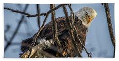 Eagle Power Bath Towel by Ray Congrove