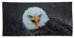 Eagle Stare Bath Towel